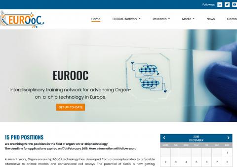 Responsive Webdesign Forschungsinstitut-Desktop
